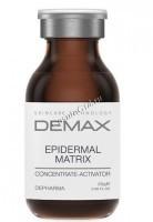 Demax Concentrate-Activator Serum regenerating demages of epidermal matrix (Концентрат восстанавливающий повреждения кожного матрикса), 20 гр - купить, цена со скидкой