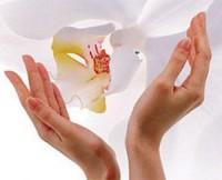 ALESSANDRO Питательное масло для ногтей и кутикулы 10мл - купить, цена со скидкой