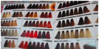 Shot Палитра оттенков красок для волос (DNA, Chic Therapy, Ambition) - купить, цена со скидкой