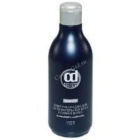 Constant Delight Шампунь, придающий дополнительный блеск и сияние волосам, 250 мл. - купить, цена со скидкой