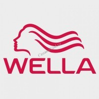 Wella Visionair M50 (сушуар настенная комплектация) - купить, цена со скидкой