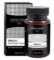 Anna Lotan Pro Emblica C active powder concentrate («Эмблика С» Активный концентрат-порошок), 70 гр. - купить, цена со скидкой