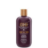 CHI Deep Brilliance Professional Neutralizing shampoo (Нейтрализирующий шампунь для глубокого очищения), 355 мл - купить, цена со скидкой