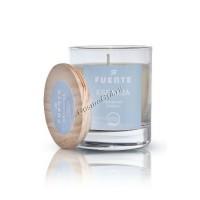 Fuente Esencia Fragnace Diffuser (Диффузер для ароматизации) - купить, цена со скидкой