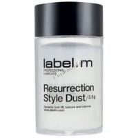 Label.m Resurrection style dust (Моделирующая пудра), 3,5 гр - купить, цена со скидкой