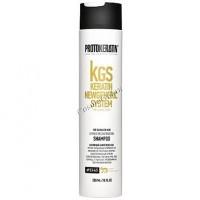 Protokeratin Express Reconstruction Shampoo (Шампунь экспресс-восстановление) -