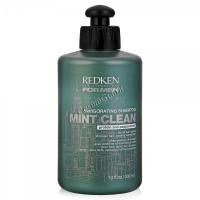 Redken Mint clean (Тонизирующий шампунь для волос и кожи головы). - купить, цена со скидкой