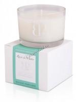 Perron Rigot Ароматическая свеча «Rosee de Matin» («Утренняя роса»), 65 гр. - купить, цена со скидкой
