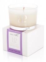 Perron Rigot Ароматическая свеча «Soiree Caline» («Вечерняя линия»), 140 гр. - купить, цена со скидкой