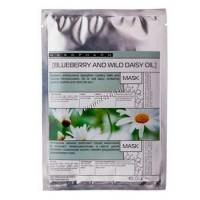 Mesopharm Professional Hair Blueberry Wild Daisy Oil (Успокаивающая  сосудоукрепляющая  маска) - купить, цена со скидкой