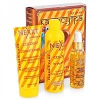 Nexxt Подарочный набор №2 (Шампунь для окрашенных, Кондиционер для окрашенных, Капли янтаря), 3 средства. - купить, цена со скидкой