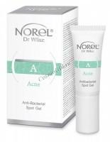 Norel Dr. Wilsz Acne Antibacterial spot gel (Антибактериальный гель для точечного нанесения), 10 мл -