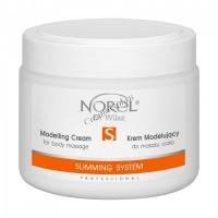 Norel Dr. Wilsz Modelling cream for body massage Slimming System (Моделирующий крем для массажа тела), 500 мл - купить, цена со скидкой