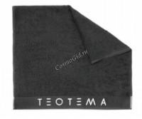 Teotema (Полотенце серое 2016) - купить, цена со скидкой