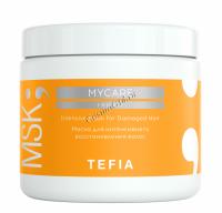 Tefia Mycare Intensive mask for Damaged Hair (Маска для интенсивного восстановления волос) -