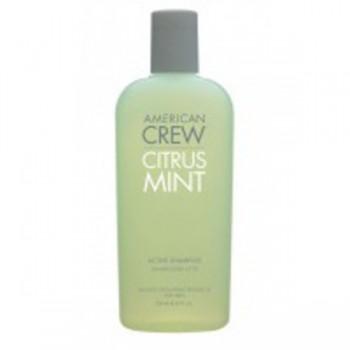 AMERICAN CREW Official Supplier to Men Citrus Mint Moisturizing Body Wash   Освежающий шампунь 250мл - купить, цена со скидкой