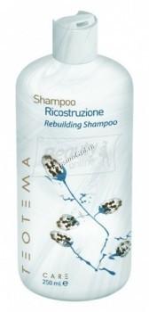 Teotema Shampoo ricostruzione rebuilding (Восстанавливающий шампунь) - купить, цена со скидкой