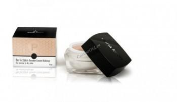 Anna Lotan Perfectone powder ream makeup (Крем-пудра «Перфектон»), 18 гр. - купить, цена со скидкой