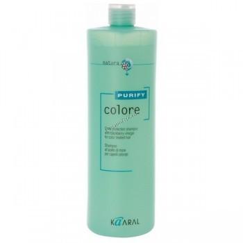 Kaaral Balance (Шампунь для окрашенных волос), 250 мл. - купить, цена со скидкой