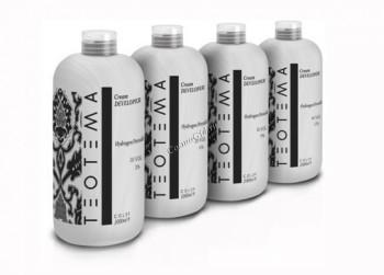 Teotema Lightening hair cream developer (Крем-проявитель) - купить, цена со скидкой