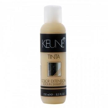 KEUNE  Lock-In Shampoo Шампунь-поддержание цвета 250мл - купить, цена со скидкой
