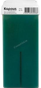 Kapous Жирорастворимый воск c ароматом алоэ в картридже, 100 мл. - купить, цена со скидкой