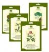 Ботанические маски на нетканной основе с протеинами шелка и растительными экстрактами